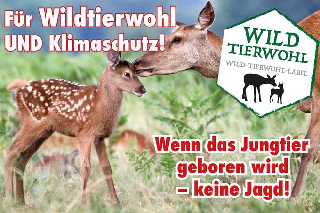 Petition für Wildtierwohl und Klimaschutz